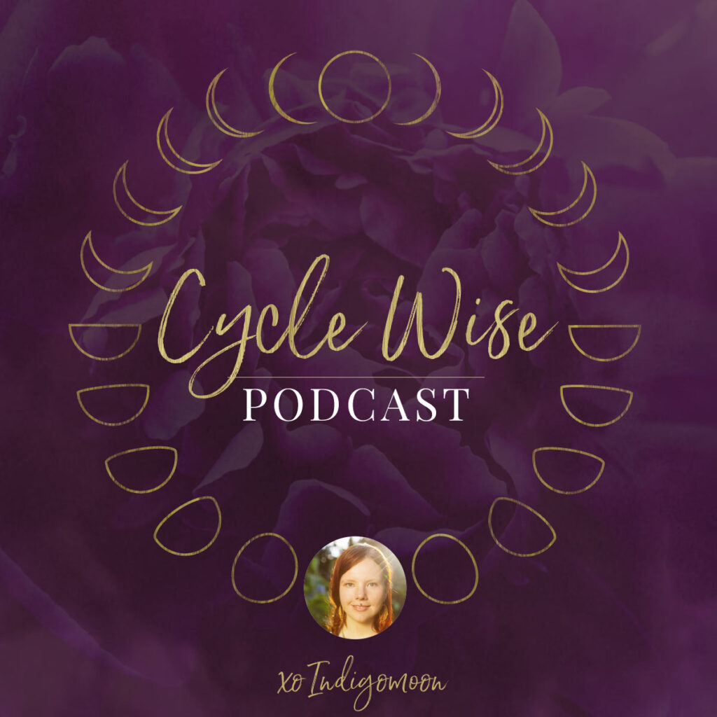 Cycle Wise Podcast cover